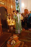 Троица 2009: перед чтением Евангелия