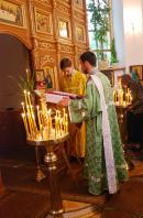 Троица 2009:  чтение Евангелия